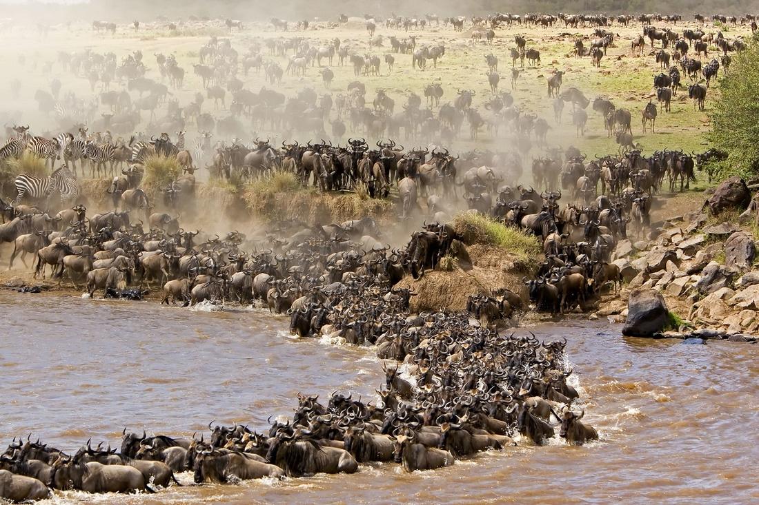 causes of rural urban migration in kenya